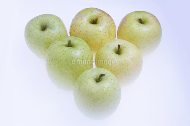 青リンゴの写真素材 [FYI04178919]