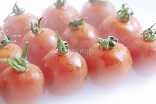 プチトマトの写真素材 [FYI04178959]