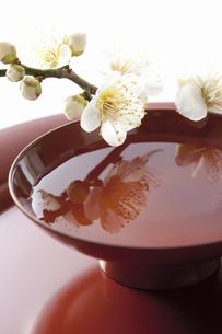 梅の花と杯の写真素材 [FYI04179002]