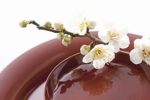 梅の花と杯の写真素材 [FYI04179003]