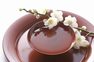 梅の花と杯の写真素材 [FYI04179006]