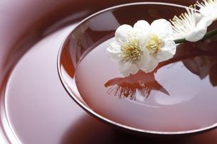 梅の花と杯の写真素材 [FYI04179008]