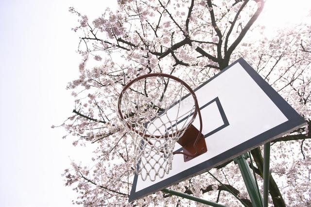 バスケットボールのゴールの写真素材 [FYI04179472]