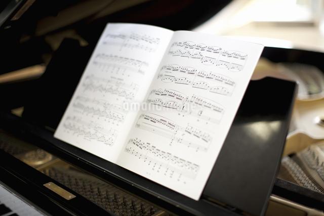 グランドピアノの写真素材 [FYI04179650]