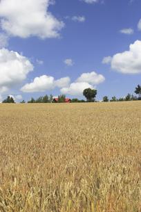 田園風景の写真素材 [FYI04180630]