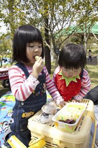 お弁当を食べる子供の写真素材 [FYI04183315]