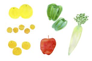 野菜のイラスト素材 [FYI04183594]