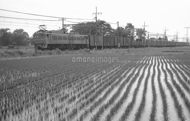 鉄道 国鉄・東北本線 EF81形電気機関車の写真素材 [FYI04183962]