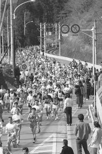 第17回青梅報知マラソン大会の写真素材 [FYI04184187]