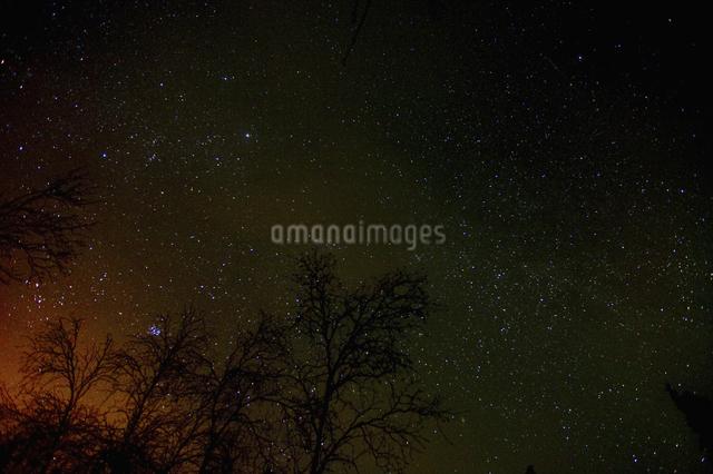 カナダ/イエローナイフの星空の写真素材 [FYI04185091]
