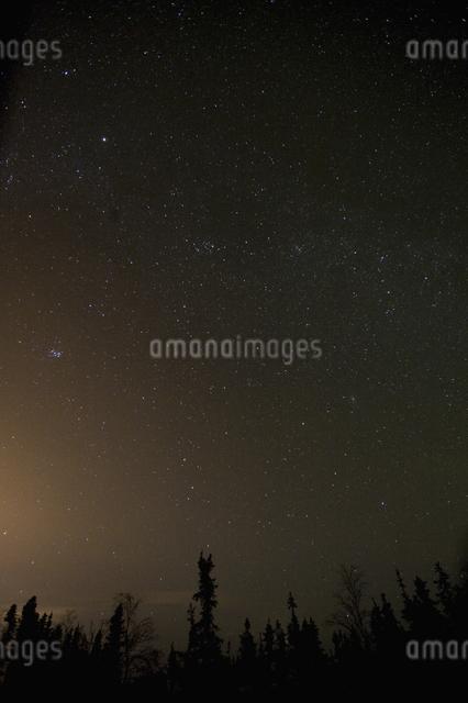 カナダ/イエローナイフの星空の写真素材 [FYI04185093]