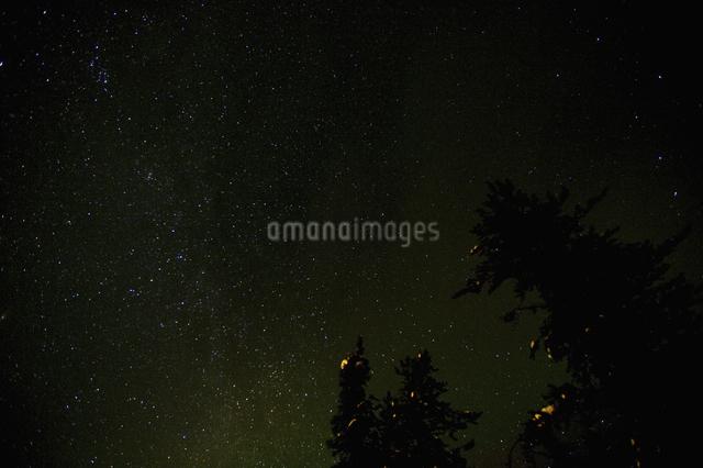 カナダ/イエローナイフの星空の写真素材 [FYI04185095]