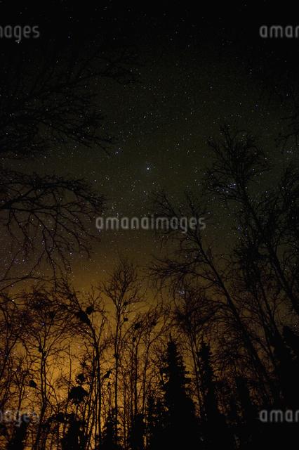 カナダ/イエローナイフの星空の写真素材 [FYI04185097]