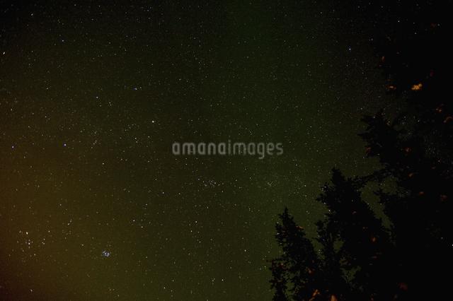 カナダ/イエローナイフの星空の写真素材 [FYI04185098]