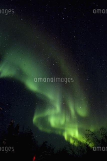 カナダ/イエローナイフのオーロラの写真素材 [FYI04185111]