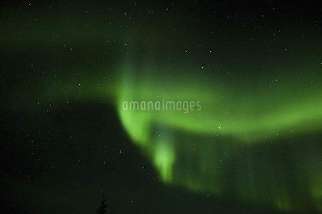 カナダイエローナイフのオーロラの写真素材 [FYI04185136]