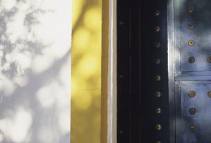 ドアの脇の木漏れ日の写真素材 [FYI04185480]