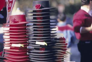 赤と黒の帽子の写真素材 [FYI04185497]