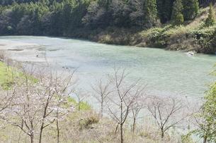 早春の吉野川の写真素材 [FYI04187634]