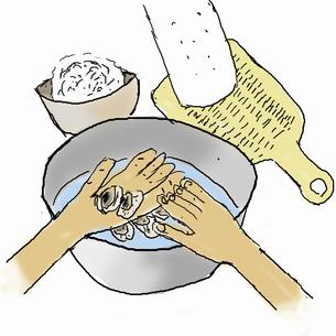 カキご飯を作る-2  カキを洗うのイラスト素材 [FYI04187895]