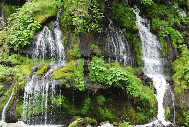 滝の写真素材 [FYI04189120]