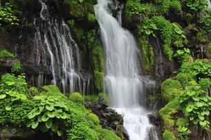 滝の写真素材 [FYI04189183]