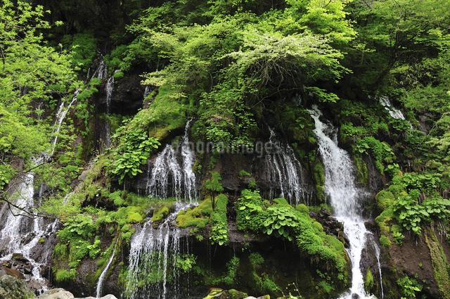 滝の写真素材 [FYI04189185]