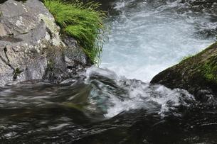 渓流の写真素材 [FYI04189186]