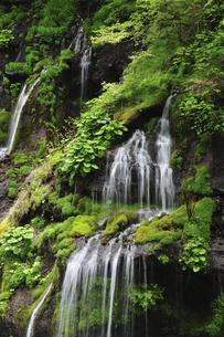 滝の写真素材 [FYI04189187]