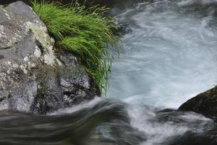 渓流の写真素材 [FYI04189188]