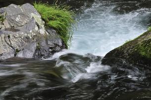 渓流の写真素材 [FYI04189190]