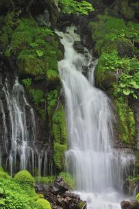 滝の写真素材 [FYI04189191]