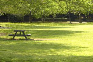 公園の写真素材 [FYI04189554]