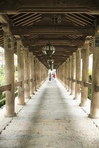 長谷寺登廊の写真素材 [FYI04189984]