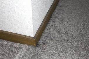 洋室のカーペットのカビの写真素材 [FYI04191359]