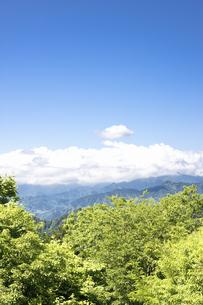 高尾山からの眺めの写真素材 [FYI04193352]