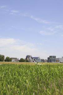 草原と町並の写真素材 [FYI04194722]