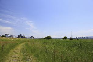 草原と町並の写真素材 [FYI04194728]