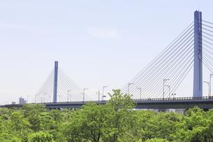 橋の写真素材 [FYI04194748]