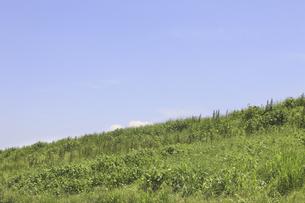 草原と空の写真素材 [FYI04194750]