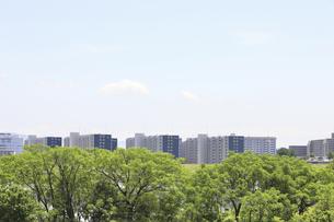 河川敷とマンションの写真素材 [FYI04194754]