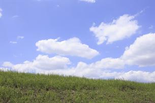 草原と空の写真素材 [FYI04194780]