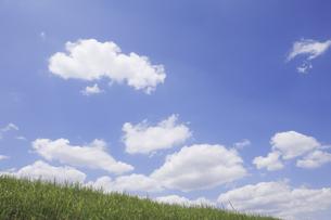 草原と空の写真素材 [FYI04194782]