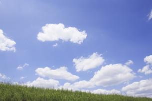草原と空の写真素材 [FYI04194783]