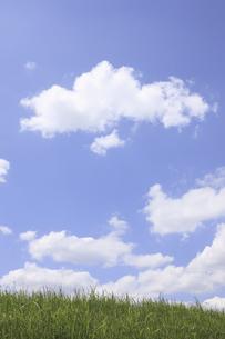 草原と空の写真素材 [FYI04194784]