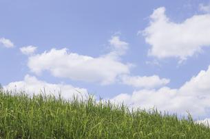 草原と空の写真素材 [FYI04194786]