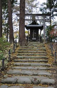 晩秋の米沢・春日神社の写真素材 [FYI04200438]