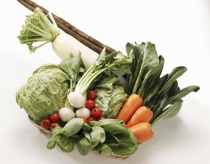 春の新鮮野菜の写真素材 [FYI04200744]