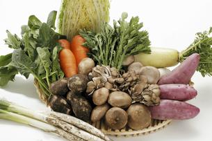 冬の新鮮野菜の写真素材 [FYI04200745]