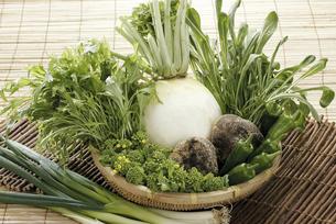 春の京野菜の写真素材 [FYI04200751]